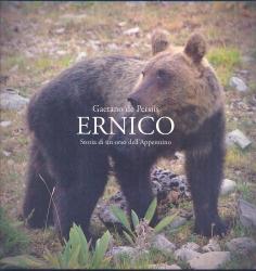 Ernico