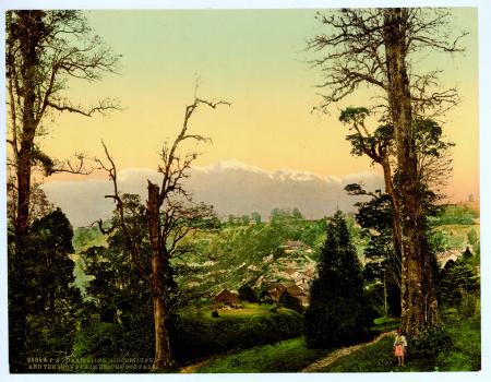 20059 Darjeeling. Kinchinjunga and the snows from Beechwood Park