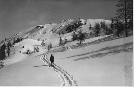 [Luogo non identificato (Alpi Cozie?): sciatore]
