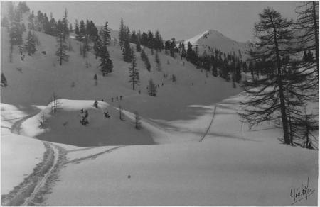 [Luogo non identificato (Alpi Cozie?): gruppo di sciatori in una valle innevata]