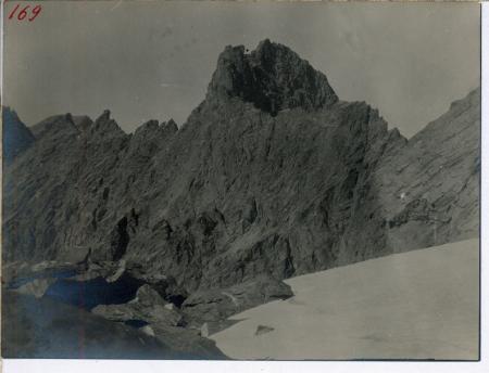 Punta Roma dal centro della morena alla linea di displuvio del ghiacciaio superiore della P. Gastaldi