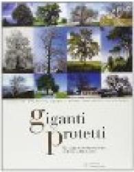 Giganti protetti: gli alberi monumentali in Emilia-Romagna