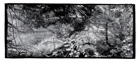 Marion Lake I, 2000