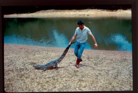 [Brasile, Mato Grosso: giochi con uno jacaré (caimano) tra i laghetti del Gran Pantanal, novembre 1967]
