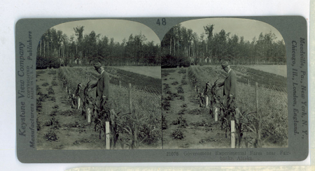 AL48 (21078) - Government Experimental Farm near Fairbanks, Alaska