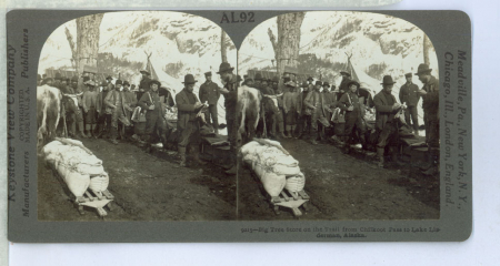 AL92 (9215) - Big Tree Store on the Trail from Chilkoot Pass to Lake Lindeman, Alaska/ Benjamin Lloyd Singley [ripresa], Keystone View Company [edizione]