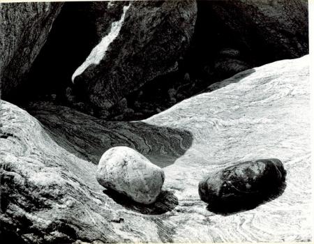 Valle Gesso, greto del Torrente Gesso, 1993