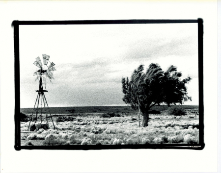 An old windmill and wind-tossed tree at an abandoned estancia in Patagonia, gennaio 1998