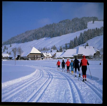 Skifahren im Schwarzwald [Foresta Nera, sci di fondo]