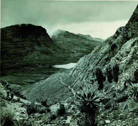 Sierra Nevada de Cocuy. Alto Vallone De Boqueron