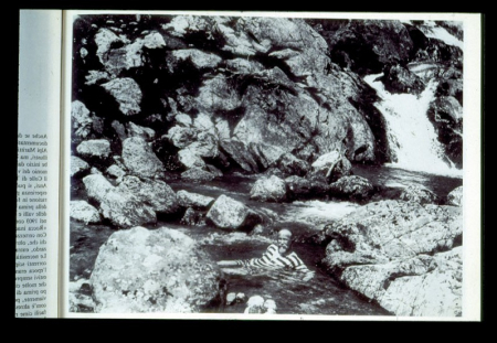 [Riprese varie, riproduzioni fotografiche da libri: ritratto di sciatore, incisione ex libris, uomo a bagno di un torrente]
