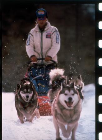 [Riprese varie di corse con i cani da slitta: Dodo Perri, Giacomo Perri, Tim White durante la premiazione di Alpirod, Doko Cup]
