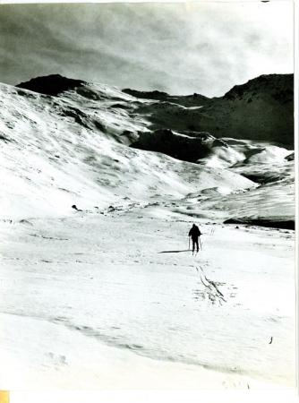 Monte Terra Nera