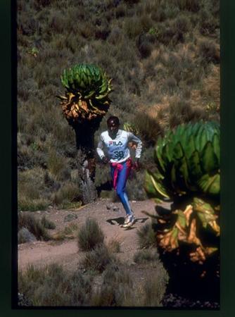 [Riprese varie di corsa in montagna tra cui edizioni della Skyrunner in Kenya, Shishapagma, Tibet, Nepal, Messico]