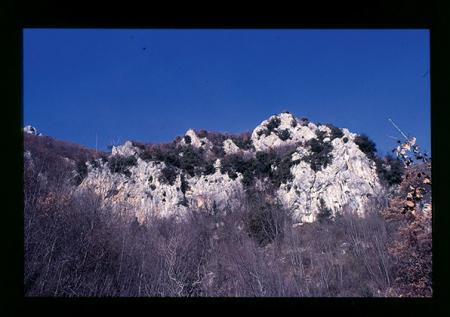 [Riprese varie di arrampicata su parete rocciosa e palestra]