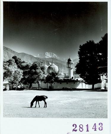 Villaggio Chitral, Tirich Mir