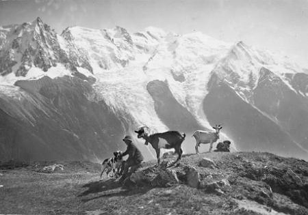[Bambini, capre e cane sul Monte Bianco]