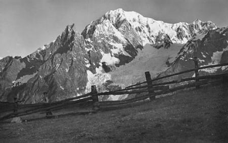[155 - Courmayeur: Aig. Noire de Peteret m. 3773, M. Bianco m. 4807 e Ghiacc. della Brenva (da E)]