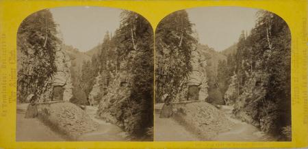 188.-Vue près de Ragatz. Suisse.
