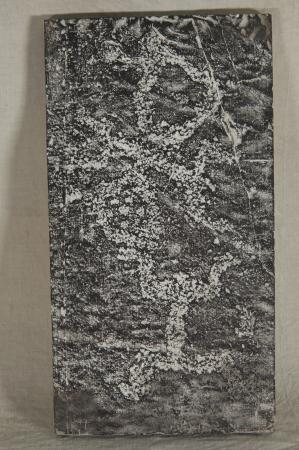 Calco di incisione rupestre della Val Camonica