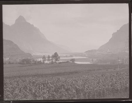 [Raccolta di negativi del fotografo meranese Ludwing Graf: Lago di Misurina e Monte Cristallo?]