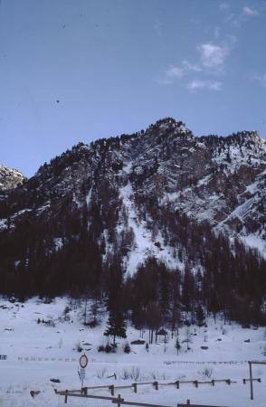 [Valle d'Aosta, Cogne]