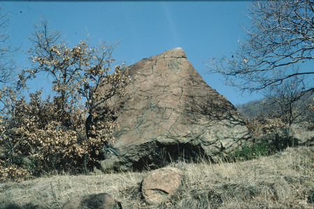 [Piemonte, Val di Susa: Masso della Torre della Vigna, Pera Morera, Roc d'la Rocia, Masso di S. Ambrogio, Pera Luvera]