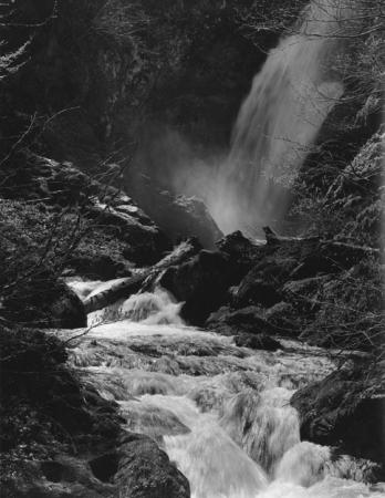 Valle Pesio: torrente Pesio