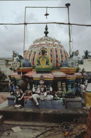 [Riprese varie di paesaggi, zone urbane, comunità locali, fotografie di viaggio di aree non identificate dell'India]