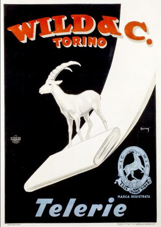 Wild &C. Torino