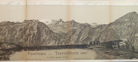 Panorama vom Torrenthorn 3003 m.