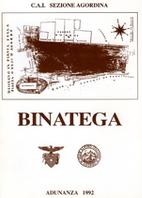 Binatega