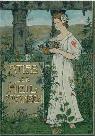 Atlas der Heilpflanzen des Prälaten Kneipp
