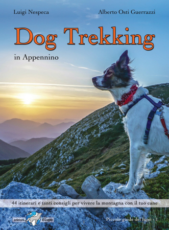 Dog trekking in Appennino